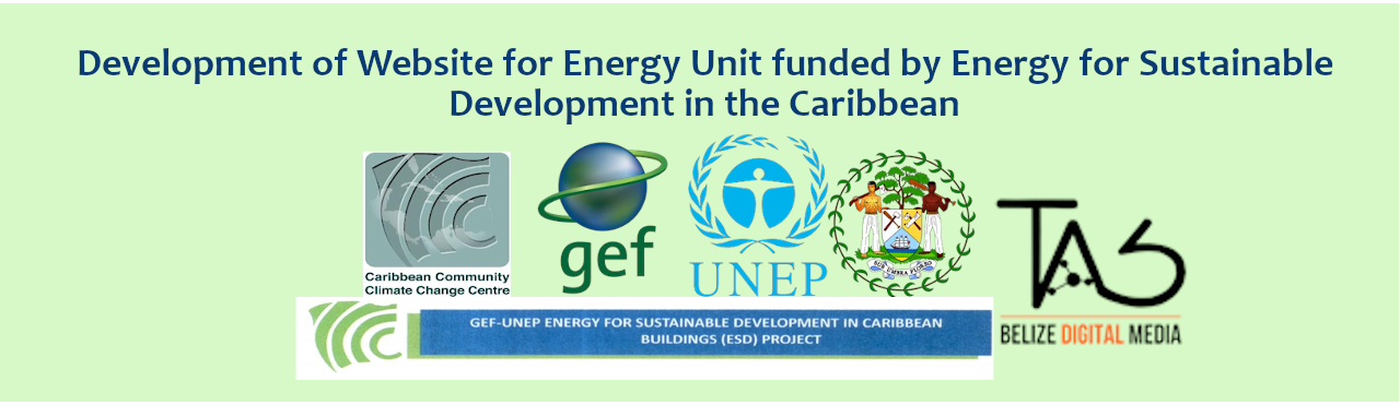 Development of a website for the Energy Unit funded by Energ ...