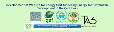 Development of a website for the Energy Unit funded by Energ ... Image 1